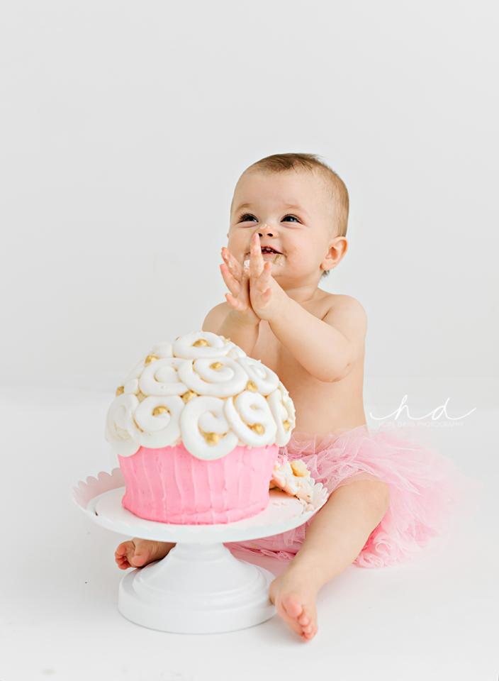 meridian mississippi cake smash
