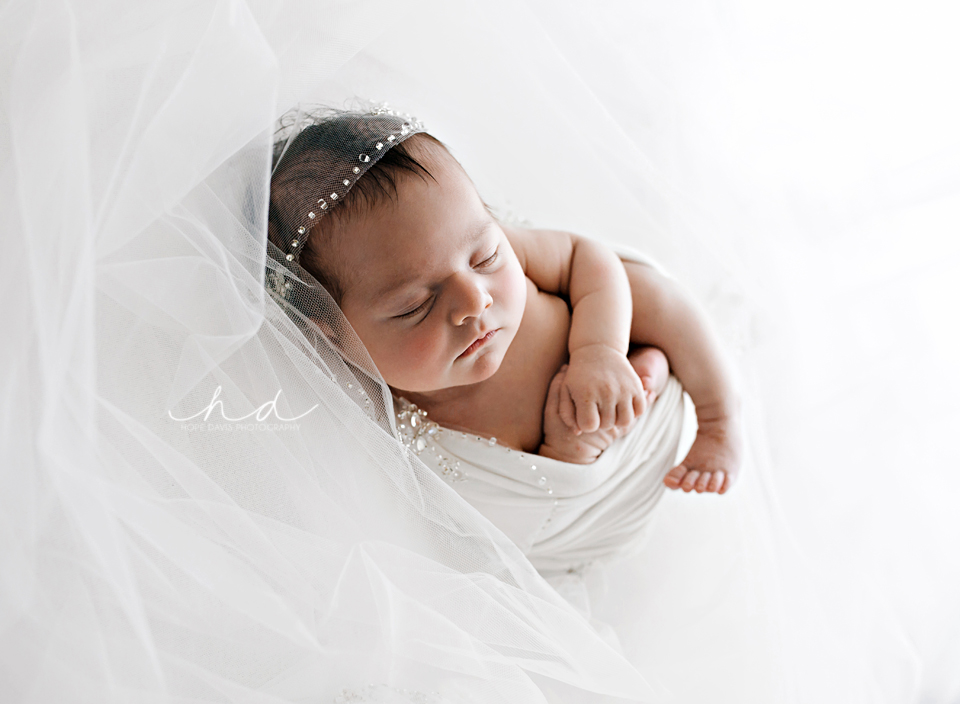 newborn and wedding veil photo